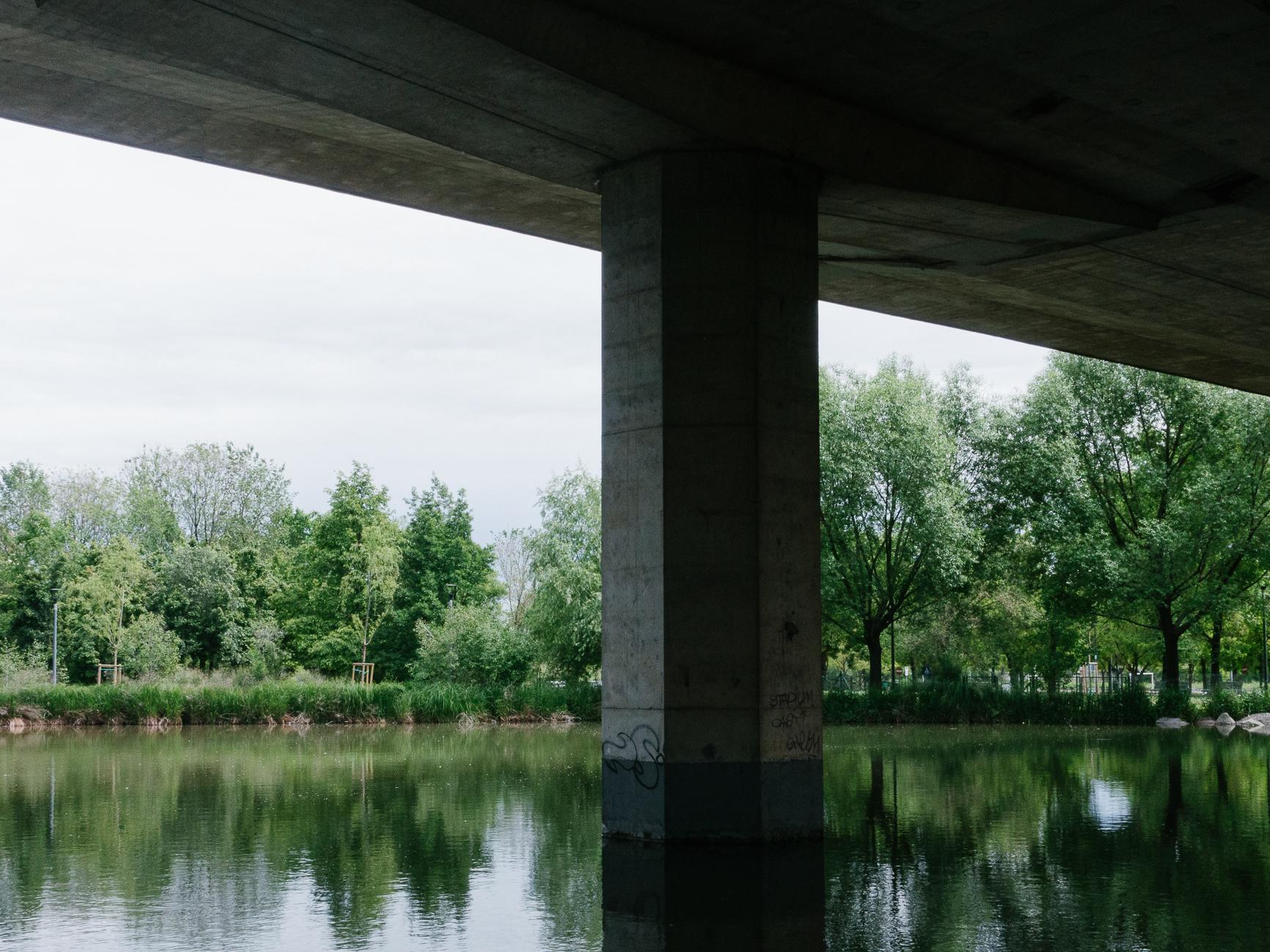 photo #34